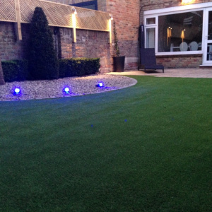 garden with artificial grass