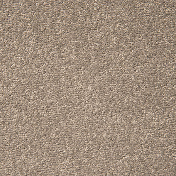 Best Price Abington Stainfree Ultra Carpet At Vincent